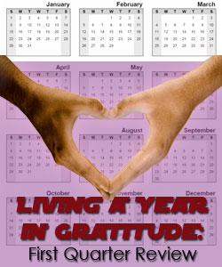 living in a year in gratitude - first quarter