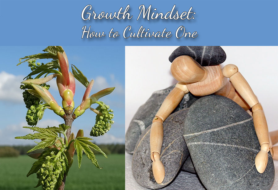 Growth Mindset: How to Cultivate One