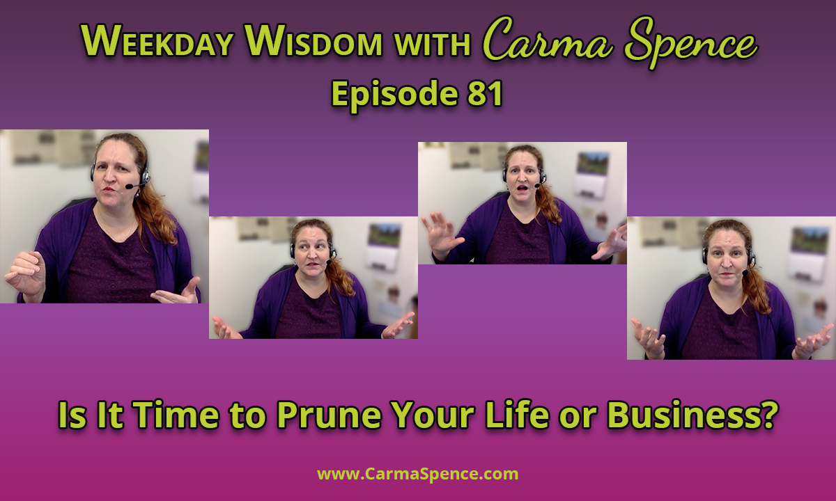 Is it time to prune your business or life?