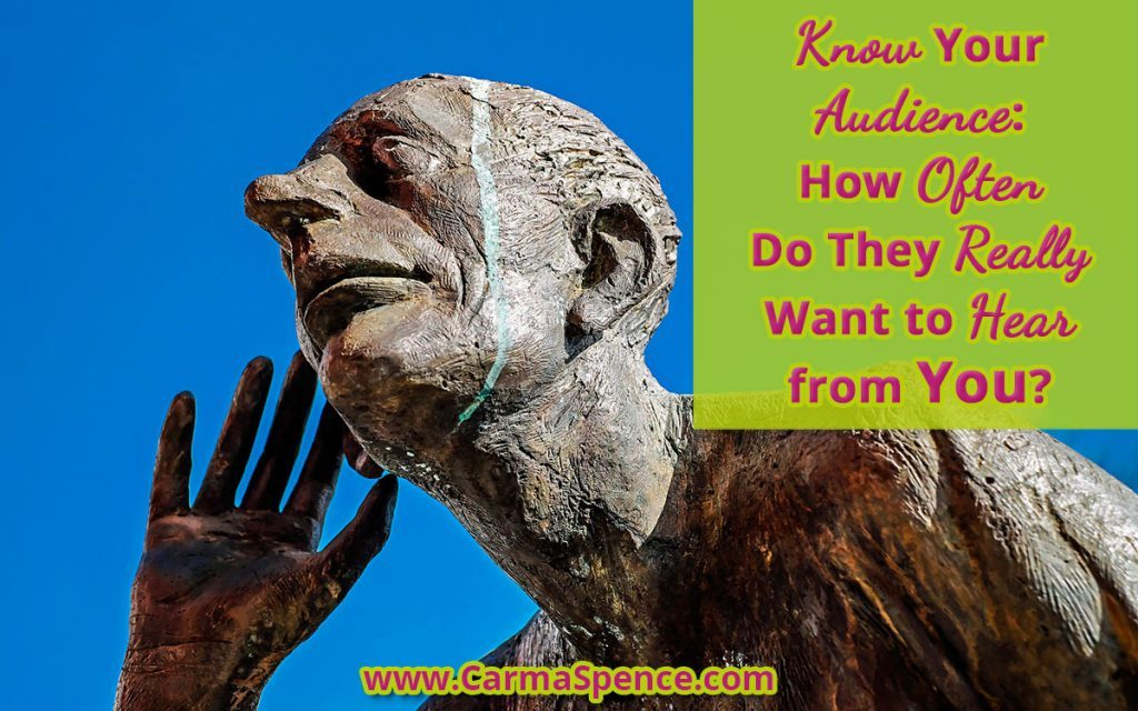 Know Your Audience: How Often Do They REALLY Want to Hear from You?